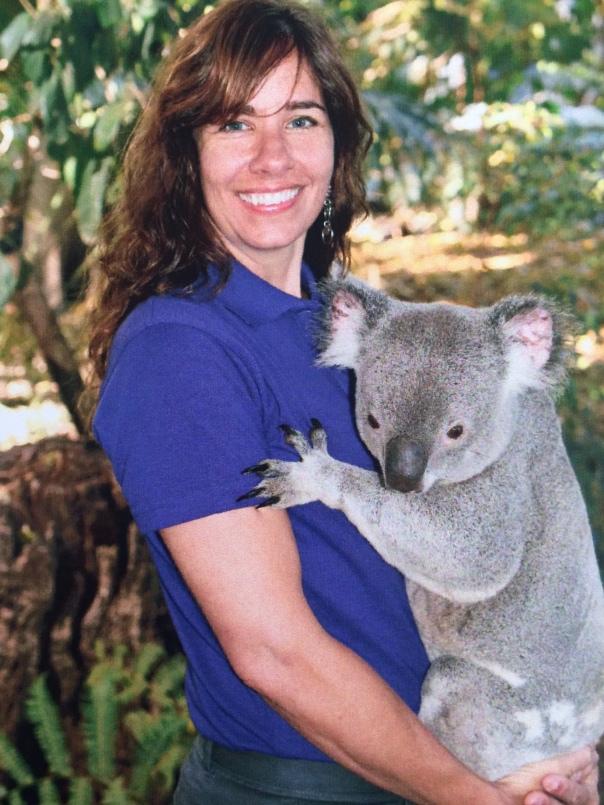 aus koala